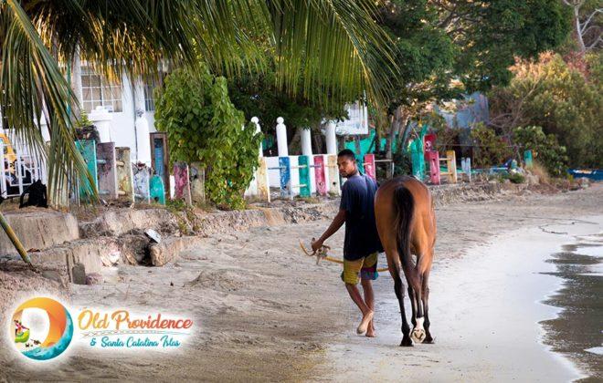 foto-raizal-caballo-old-providence-santa-catalina