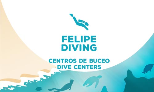 felipe-diving-olf-providence-english